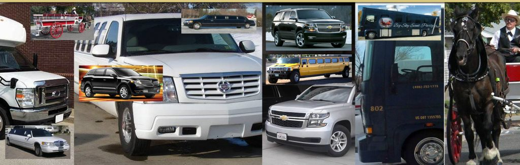 Billings & Montana Transportation Services: A Serious Fleet of Vehicles