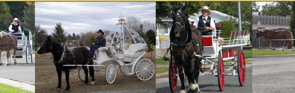 Classic Horse Carriages