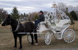 fleet-home-Total-Transportation-Billings-horse-Carriage-Wedding