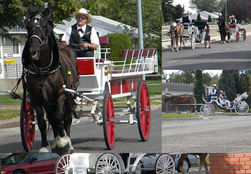 Horse Drawn Carriages & Wagons