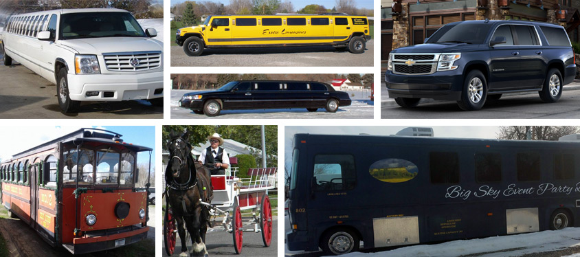 A Dynamic Fleet of For Hire Vehicles